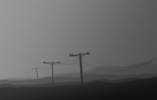 Picture grey, posts, wire, black and white, 156