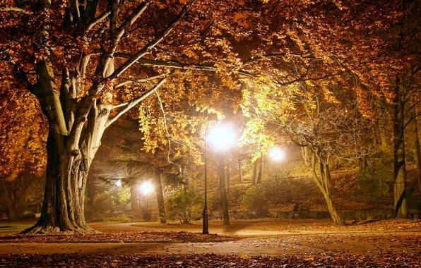 Picture autumn, landscape, lights, Park, the evening, night, park, autumn, fall season