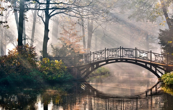 Picture rays, trees, nature, Park, romance, river, the bridge, the bushes