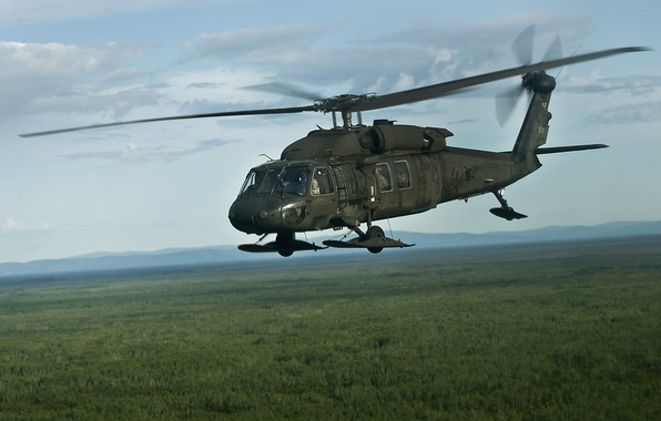 "Picture flight, helicopter, multipurpose, UH-60, Black Hawk, ""Black Hawk"""