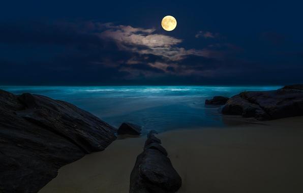 Picture sea, beach, night, rocks, the moon, the full moon