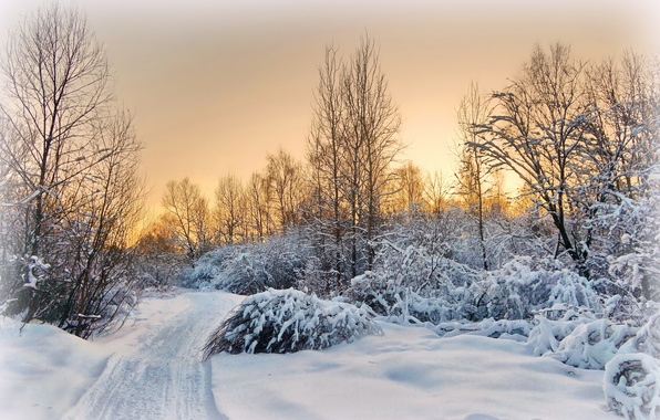 Picture winter, road, snow, landscape, sunset, the evening, village, the suburbs