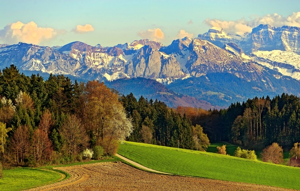 Picture road, field, forest, the sky, clouds, snow, trees, mountains, rocks, meadow