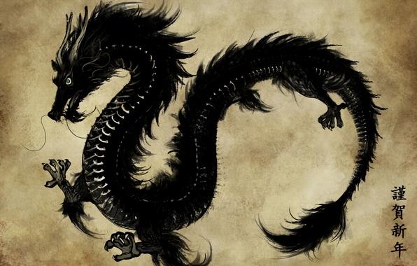 Picture paper, black, dragon, Asia, figure, art, characters, parchment, eliz7