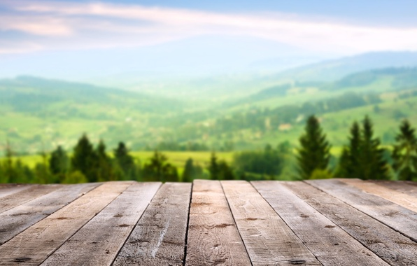Picture forest, summer, the sky, macro, trees, landscape, mountains, nature, mood, stay, Board, view, focus, spring, …