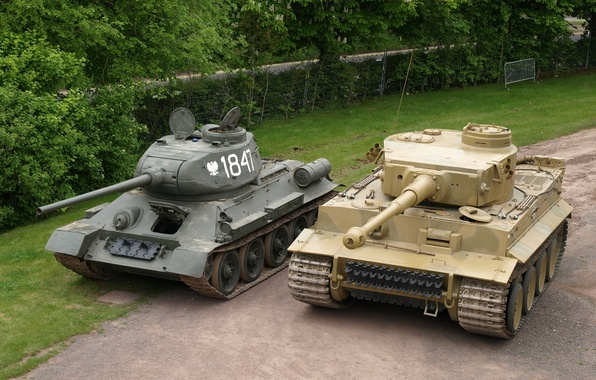 Picture Tiger, The fence, Trees, Technique, T-34, Tanks, Military