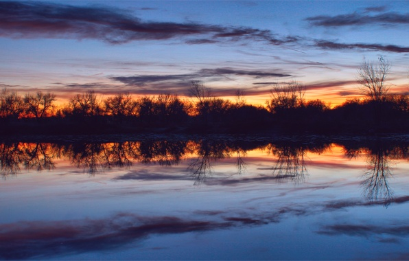 Picture the sky, water, clouds, trees, sunset, orange, surface, reflection, river, silence, The evening, twilight, blue