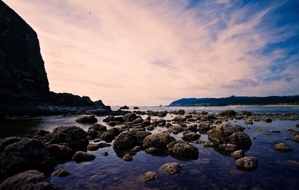 Picture sea, clouds, landscape, rock, stones, shore, a bird in the sky