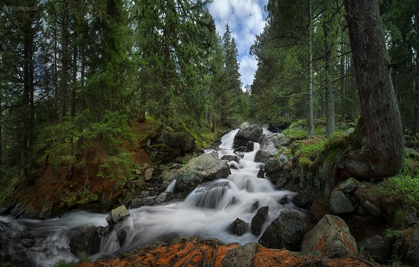 Picture forest, waterfall, Bulgaria, Bulgaria, Rila National Park, Skakavica Waterfall, Rila national Park