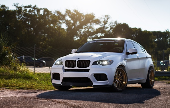 Picture white, trees, bmw, BMW, shadow, white, crossover, x6m, e71