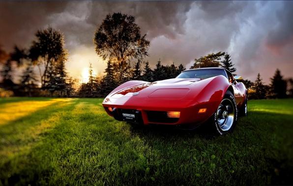 Picture grass, sunset, clouds, the evening, Corvette, Chevrolet, 1969, Chevrolet, Corvette