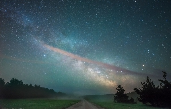 Picture road, the sky, stars, trees, night, field, the milky way, forest
