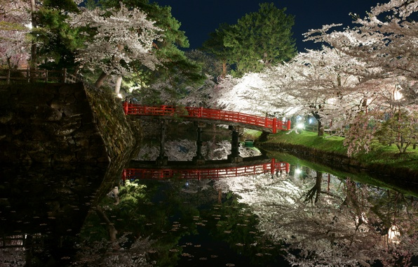 Picture light, trees, flowers, night, bridge, Park, Japan, spring, garden, pond