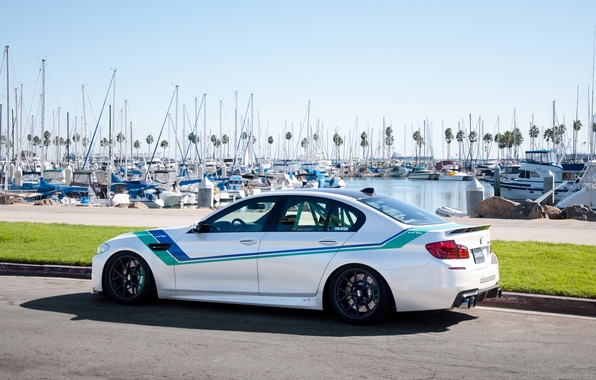 Picture white, the sky, lawn, bmw, BMW, yachts, pier, white, rear view, f10