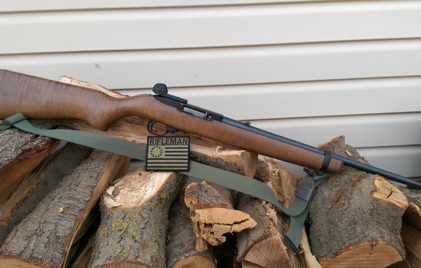 Picture weapons, rifle, Ruger, 10/22