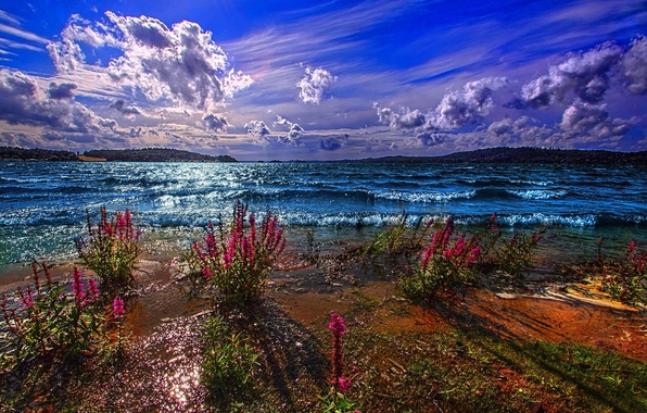 Picture MOUNTAINS, HORIZON, The SKY, CLOUDS, FLOWERS, POND, SHORE, DAL, LAKE, The EXCITEMENT