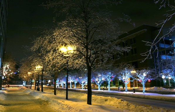 Picture The city, Snow, New Year