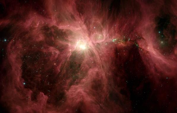 Picture nebula, Orion, Spitzer