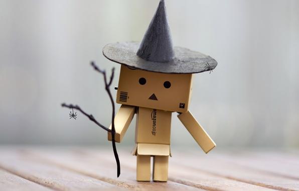 Picture danbo, box, the wizard