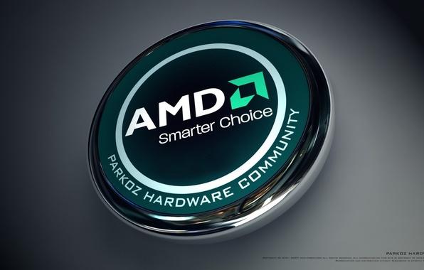 Picture AMD, Dragon, processor