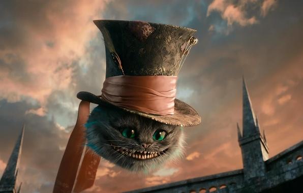 Picture cat, hat, Alice in Wonderland, Cheshire cat, Cheshire
