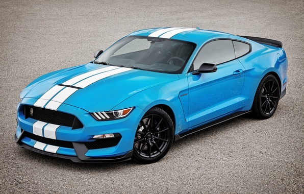 Picture Mustang, Ford, Shelby, Mustang, Ford, Shelby, GT350R