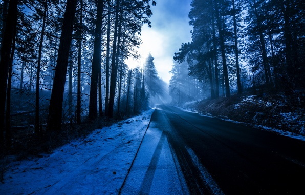 Picture winter, road, forest, the sun, rays, snow, trees, nature, blue, roadside