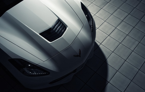 Picture Corvette, Chevrolet, white, front, roadster, Stingray