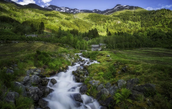 Picture trees, mountains, stream, field, village, Norway, hut, Norway, The Hardangervidda, Odda, Give, Hardanger, Hardanger, Hardangervidda