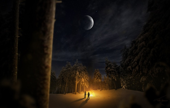 Picture winter, forest, snow, trees, night, people, glade, the fire, two