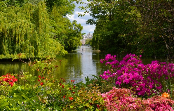 Roses In Garden: Wallpaper Lake, Park, England, Gazebo, England, Dorset