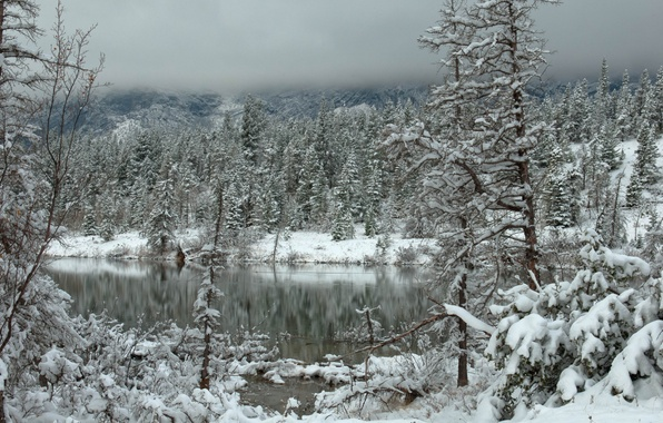 Picture winter, forest, clouds, snow, mountains, lake