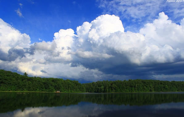 Picture the sky, water, clouds, trees, landscape, nature, reflection