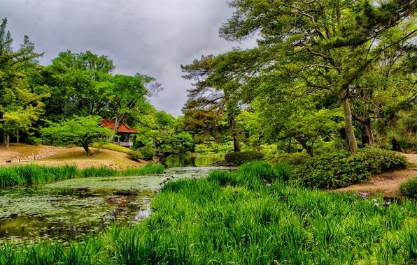 Picture greens, grass, trees, pond, Japan, garden, gazebo, Takamatsu, Ritsurin Garden