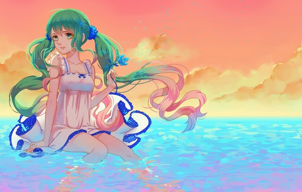 Picture flower, the sky, water, girl, clouds, sunset, smile, anime, art, vocaloid, hatsune miku, kogomel