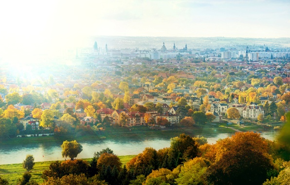 Picture autumn, the sun, light, trees, the city, river, home, Germany, Dresden, Elba, Germany, Dresden, Germany