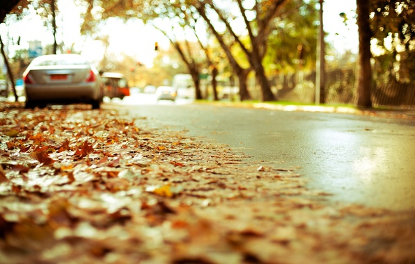 Picture road, autumn, asphalt, the city, foliage, blur, highway, effect, yellow, cars, landing