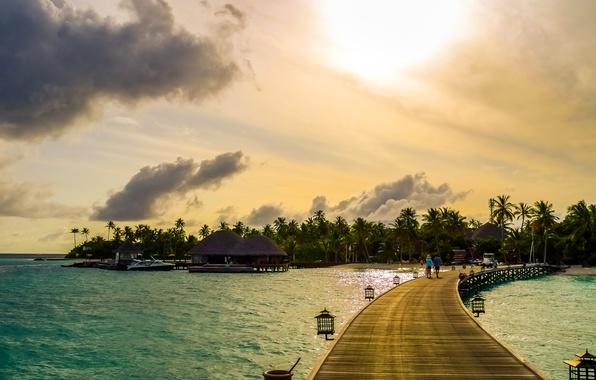 Picture sea, tropics, palm trees, shore, boats, pier, The Maldives, Bungalow
