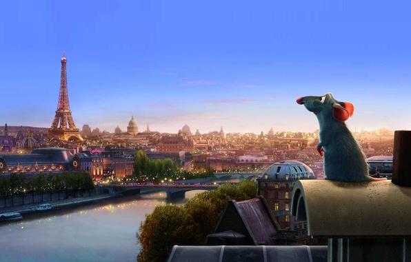 Picture cartoon, Paris, Ratatouille, mouse