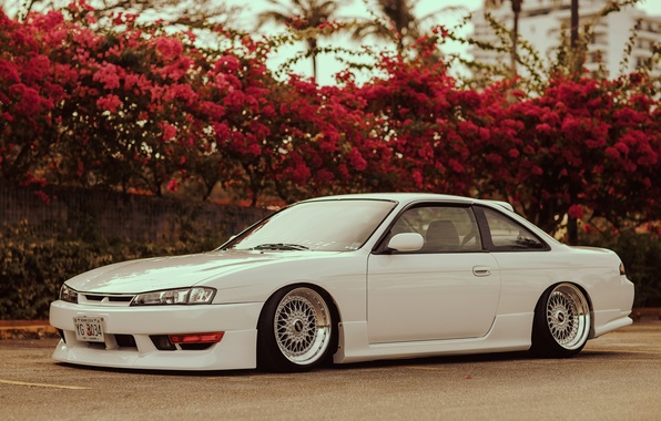 Picture flowers, tuning, white, Silvia, Nissan, white, Nissan, Sylvia, S14, stance