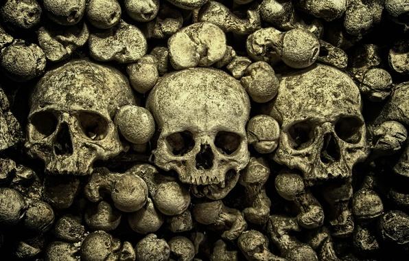 Picture macro, background, skull