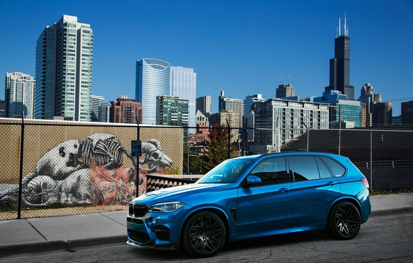 Picture BMW, Blue, Car, IND, Metallic, 2015-16, X5, M