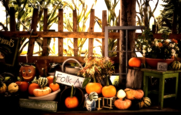 Picture Halloween, Pumpkins, Fall, Autumn