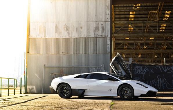 Picture wall, the building, shadow, the fence, profile, white, lamborghini, open, murcielago, Lamborghini, Murcielago, lp670-4 sv, …