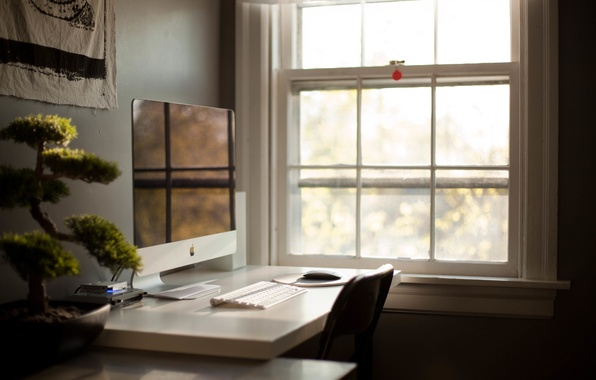 Picture table, room, bonsai, plant, apple, window, Apple, monoblock
