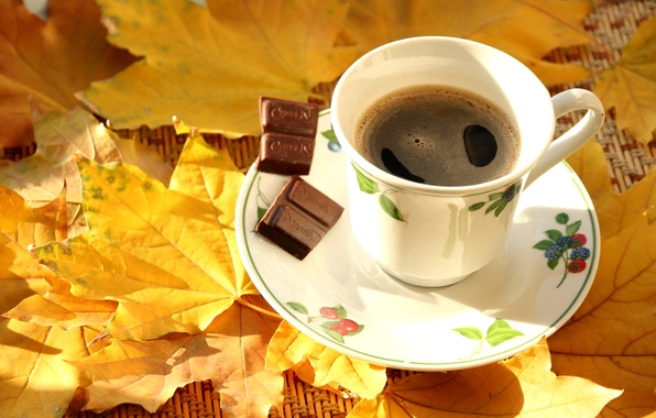 Picture autumn, leaves, coffee, chocolate, Cup, maple