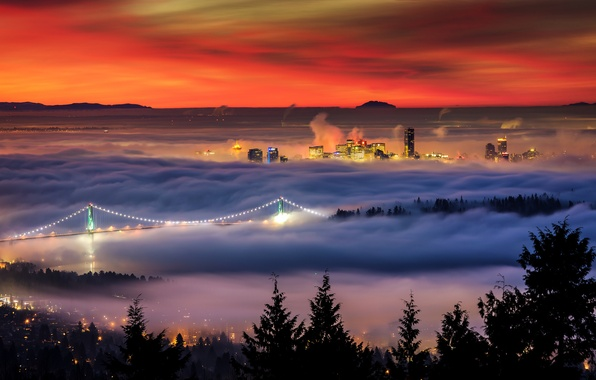 Picture winter, bridge, lights, fog, home, morning, Canada, British Columbia, Alexis Birkill photography, West Vancouver