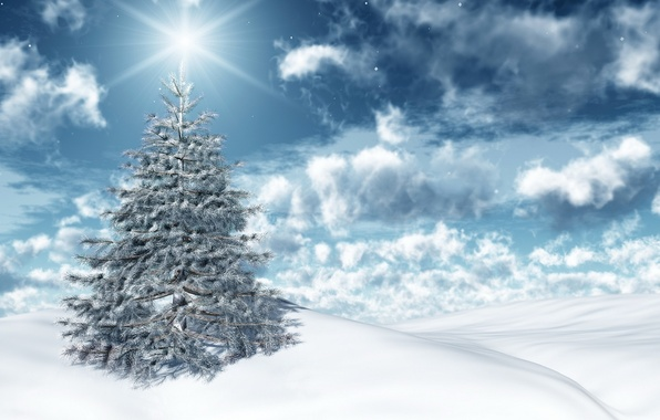 Picture winter, the sky, the sun, clouds, light, snow, holiday, new year, spruce, new year, sky, …