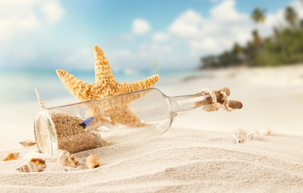 Picture sand, sea, beach, tropics, bottle, shell, starfish