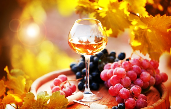 Picture photo, Leaves, Glasses, Wine, Grapes, Food